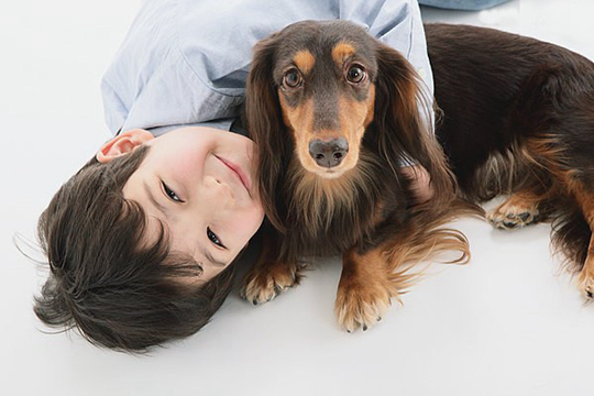 狗狗驱虫后的不良反应有哪些