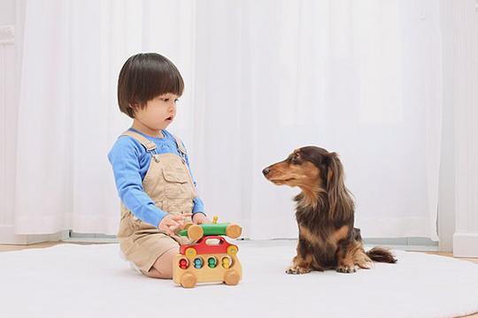 狗狗驱虫后有哪些常见的不良反应